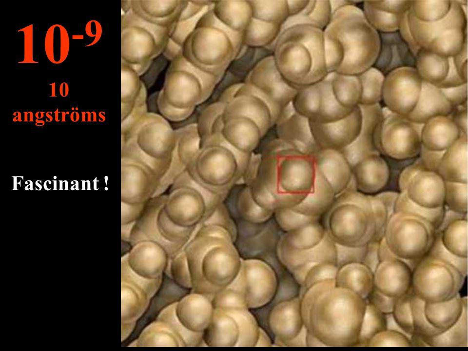 Dans ce micro univers on peut voir les chaînes d'ADN... 10 -8 100 angströms