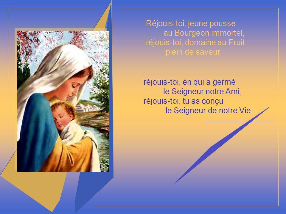 Réjouis-toi, jeune pousse au Bourgeon immortel, réjouis-toi, domaine au Fruit plein de saveur, réjouis-toi, en qui a germé le Seigneur notre Ami, réjouis-toi, tu as conçu le Seigneur de notre Vie.