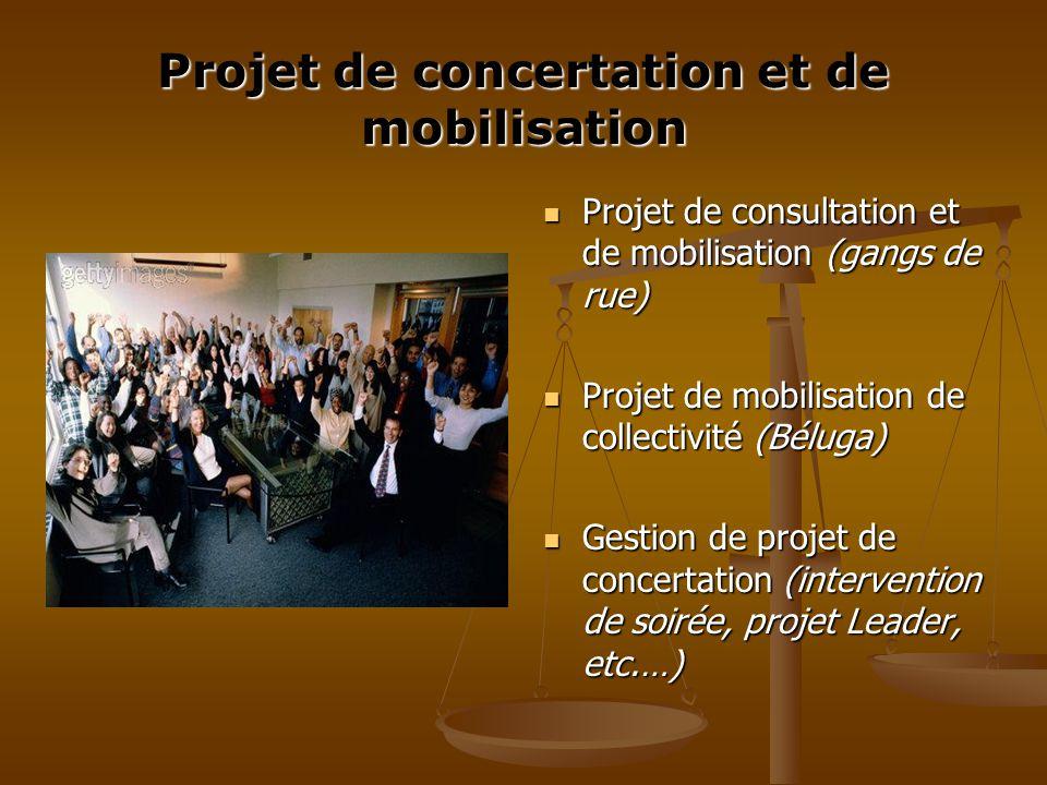 Projet de concertation et de mobilisation Projet de consultation et de mobilisation (gangs de rue) Projet de mobilisation de collectivité (Béluga) Gestion de projet de concertation (intervention de soirée, projet Leader, etc.…)