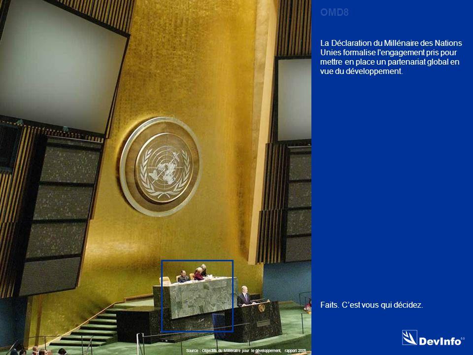 DevInfo La Déclaration du Millénaire des Nations Unies formalise l engagement pris pour mettre en place un partenariat global en vue du développement.