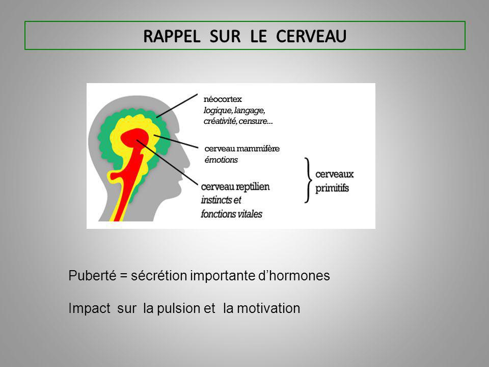Puberté = sécrétion importante d'hormones Impact sur la pulsion et la motivation