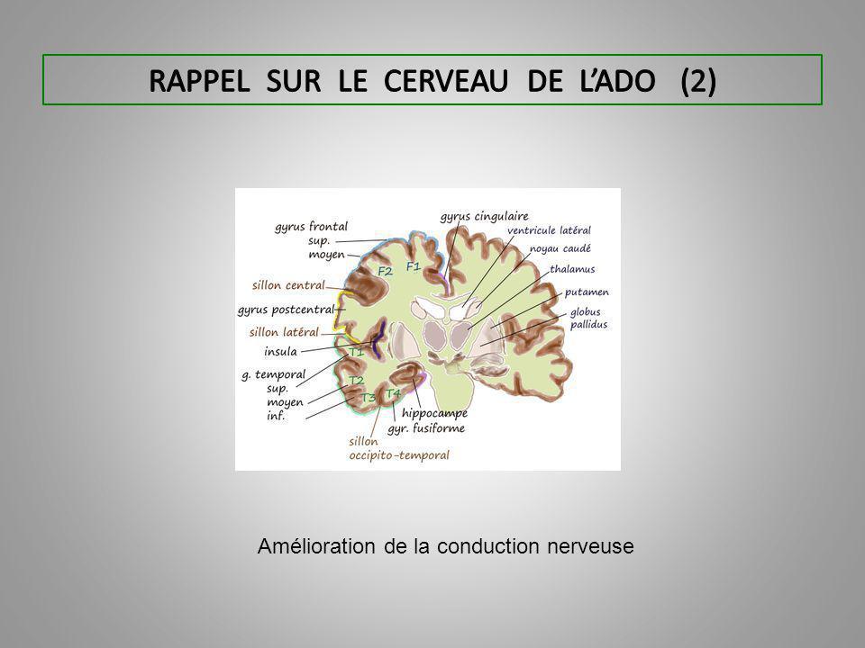 Amélioration de la conduction nerveuse