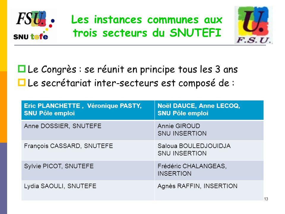 13 Les instances communes aux trois secteurs du SNUTEFI  Le Congrès : se réunit en principe tous les 3 ans  Le secrétariat inter-secteurs est compos