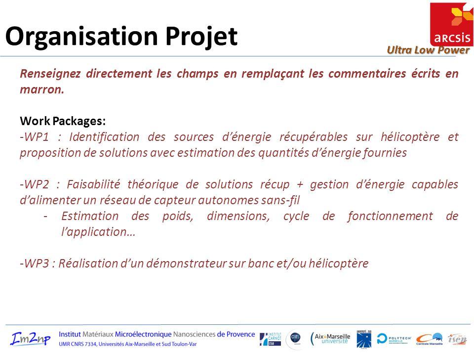 Ultra Low Power Organisation Projet Renseignez directement les champs en remplaçant les commentaires écrits en marron. Work Packages: -WP1 : Identific