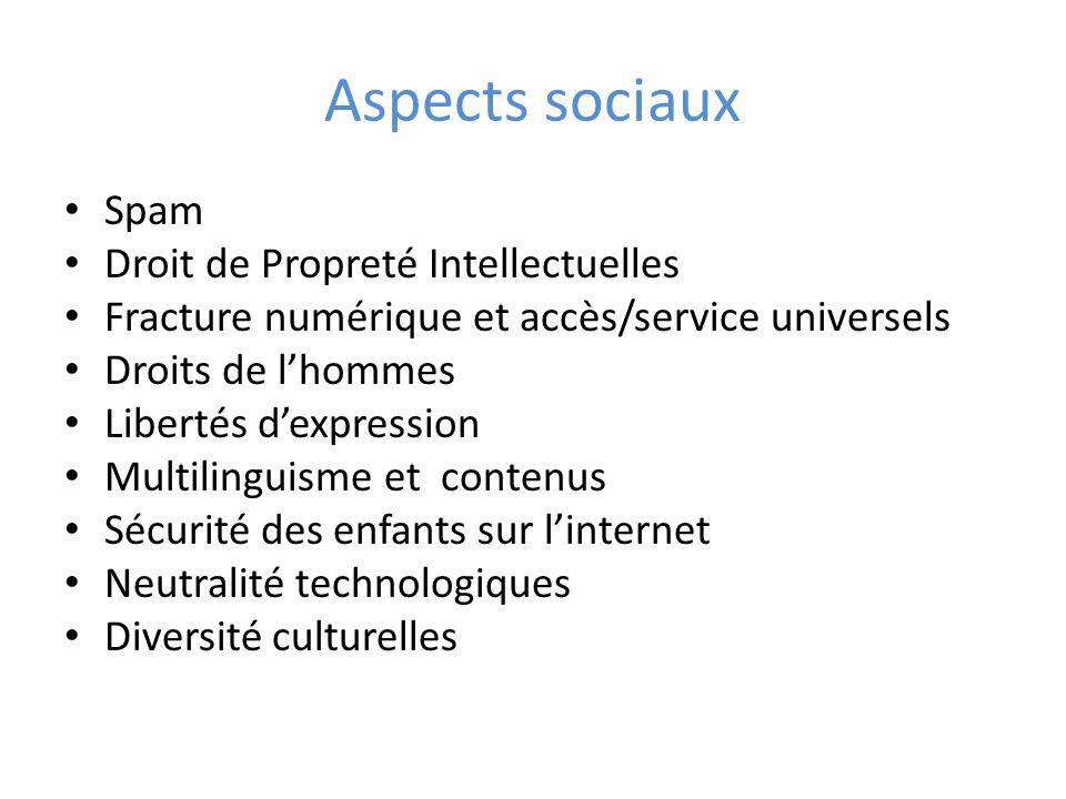 Aspects sociaux Spam Droit de Propreté Intellectuelles Fracture numérique et accès/service universels Droits de l'hommes Libertés d'expression Multilinguisme et contenus Sécurité des enfants sur l'internet Neutralité technologiques Diversité culturelles