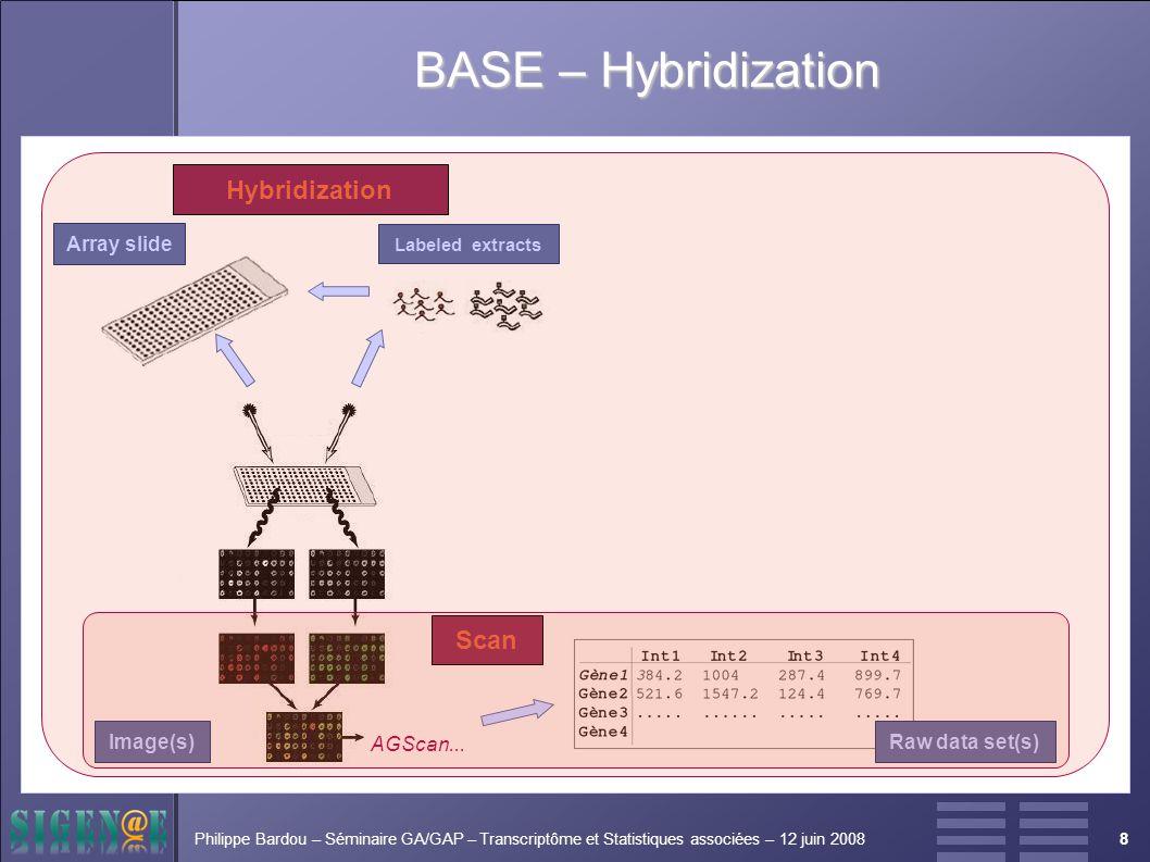 8Philippe Bardou – Séminaire GA/GAP – Transcriptôme et Statistiques associées – 12 juin 2008 Hybridization Scan Labeled extracts Array slide AGScan...