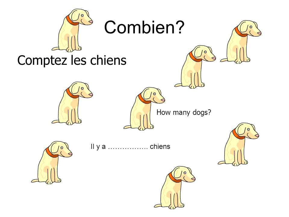 Combien? Comptez les chiens How many dogs? Il y a …………….. chiens