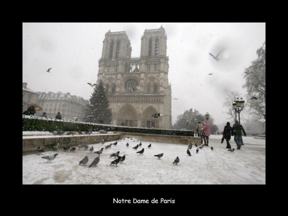 Depuis mercredi 8 décembre 2010, la ville Lumière n est que neige et verglas.