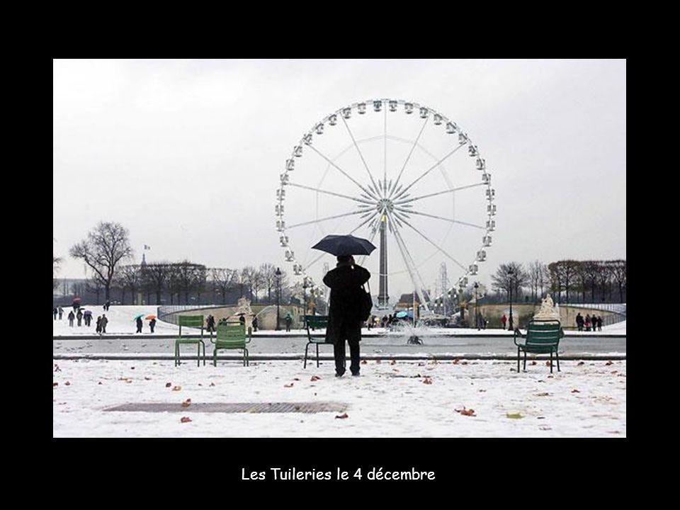 Les fameux vélib de Paris au repos.