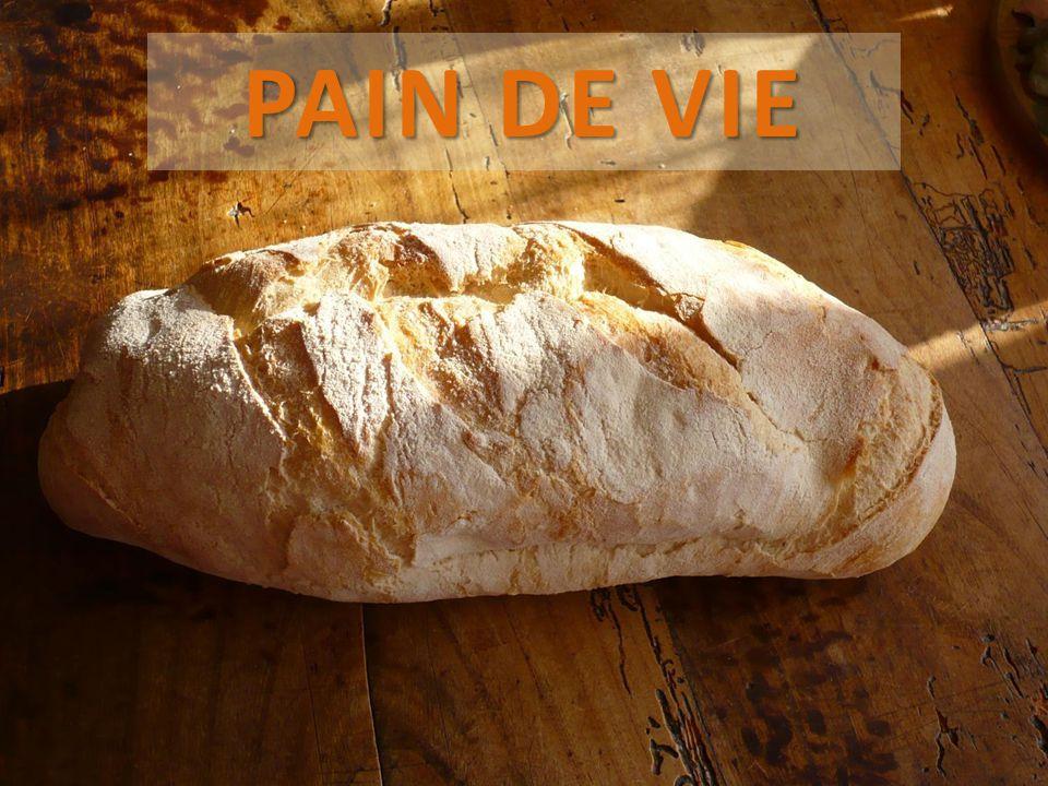 PAIN DE VIE