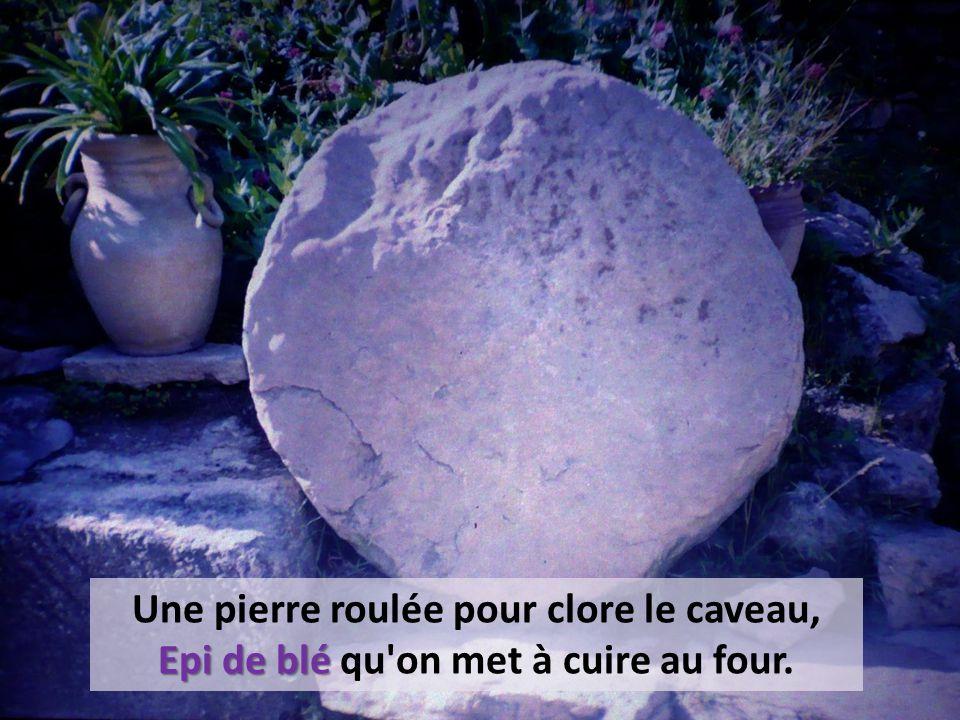 Une pierre roulée pour clore le caveau, Epi de blé Epi de blé qu on met à cuire au four.