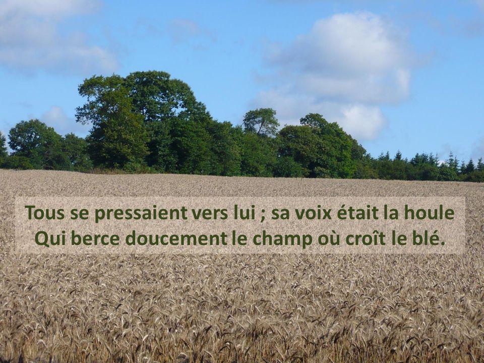 Tous se pressaient vers lui ; sa voix était la houle Qui berce doucement le champ où croît le blé.