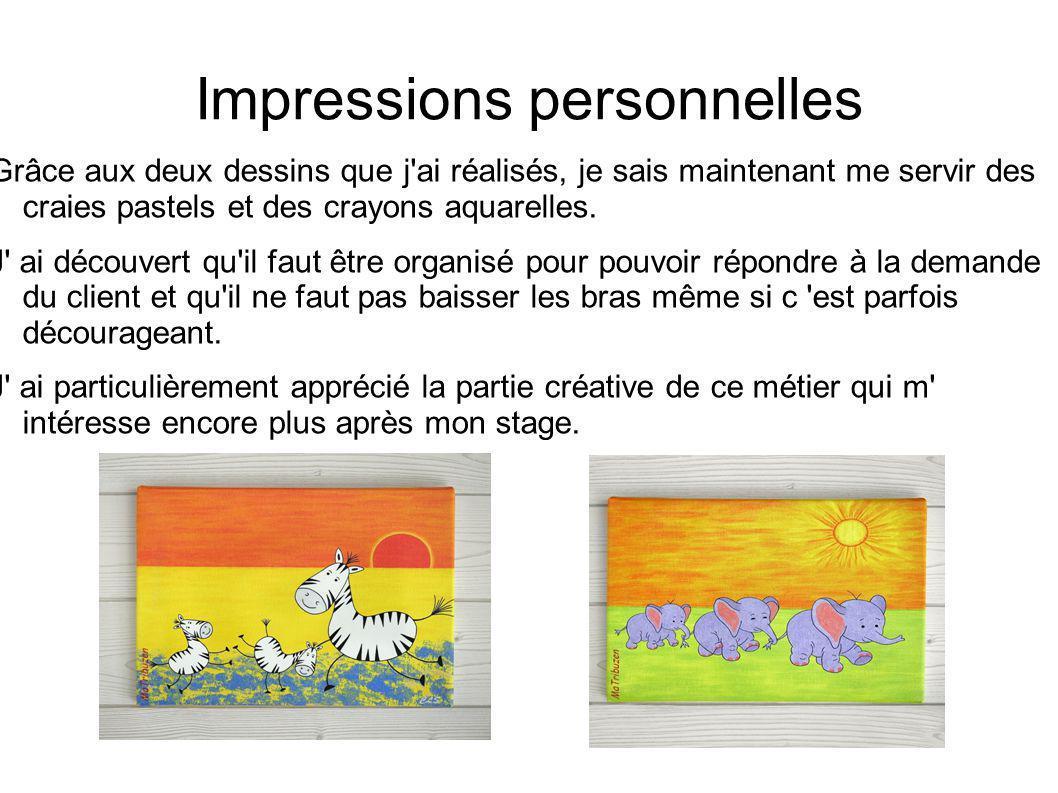 Impressions personnelles Grâce aux deux dessins que j'ai réalisés, je sais maintenant me servir des craies pastels et des crayons aquarelles. J' ai dé