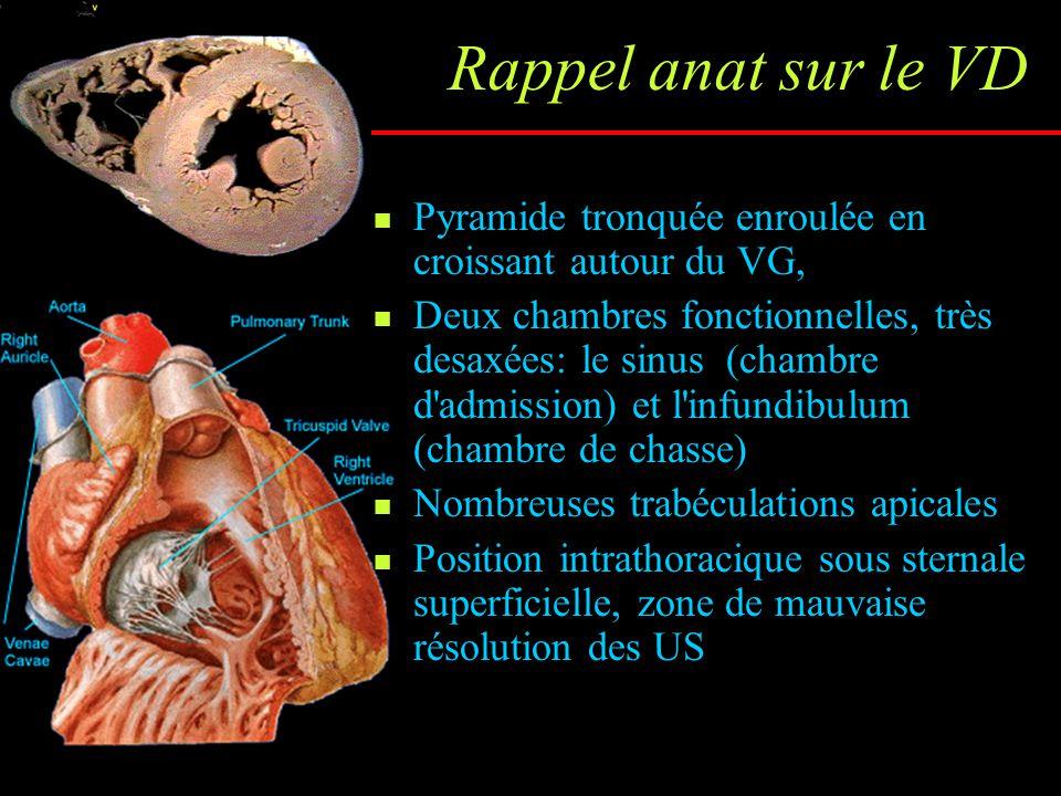 Facteurs pronostiques écho dans l HTP Épanchement péricardique, surf OD, degré de courbure septale en diastole (Raymond JACC 2002;39:1214) Taille de l OD (>27 cm²), temps d éjection VD, importance de IT (Bustamante JASE 2002;15:1160) Index de performance myocardique VD, sévérité de l IT (Yeo Am J Cardiol 1998;81:1157-61)