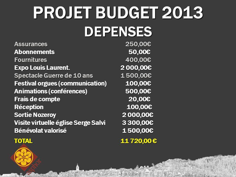 PROJET BUDGET 2013 DEPENSES Assurances 250,00€ Abonnements 50,00€ Fournitures 400,00€ Expo Louis Laurent. 2 000,00€ Spectacle Guerre de 10 ans 1 500,0