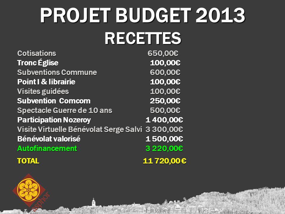 PROJET BUDGET 2013 RECETTES Cotisations 650,00€ Tronc Église 100,00€ Subventions Commune 600,00€ Point I & librairie 100,00€ Visites guidées 100,00€ S