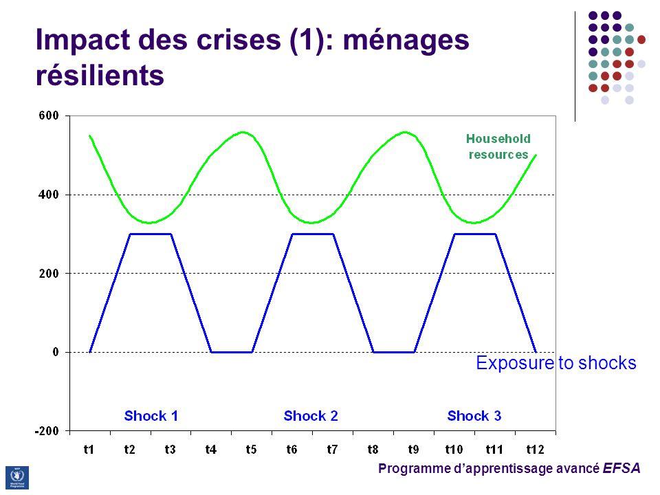 Programme d'apprentissage avancé EFSA Impact des crises (1): ménages résilients  Exposure to shocks