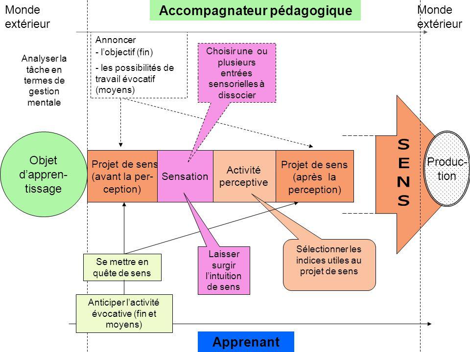 Projet de sens (avant la per- ception) Sensation Activité perceptive Projet de sens (après la perception) Objet d'appren- tissage Accompagnateur pédag