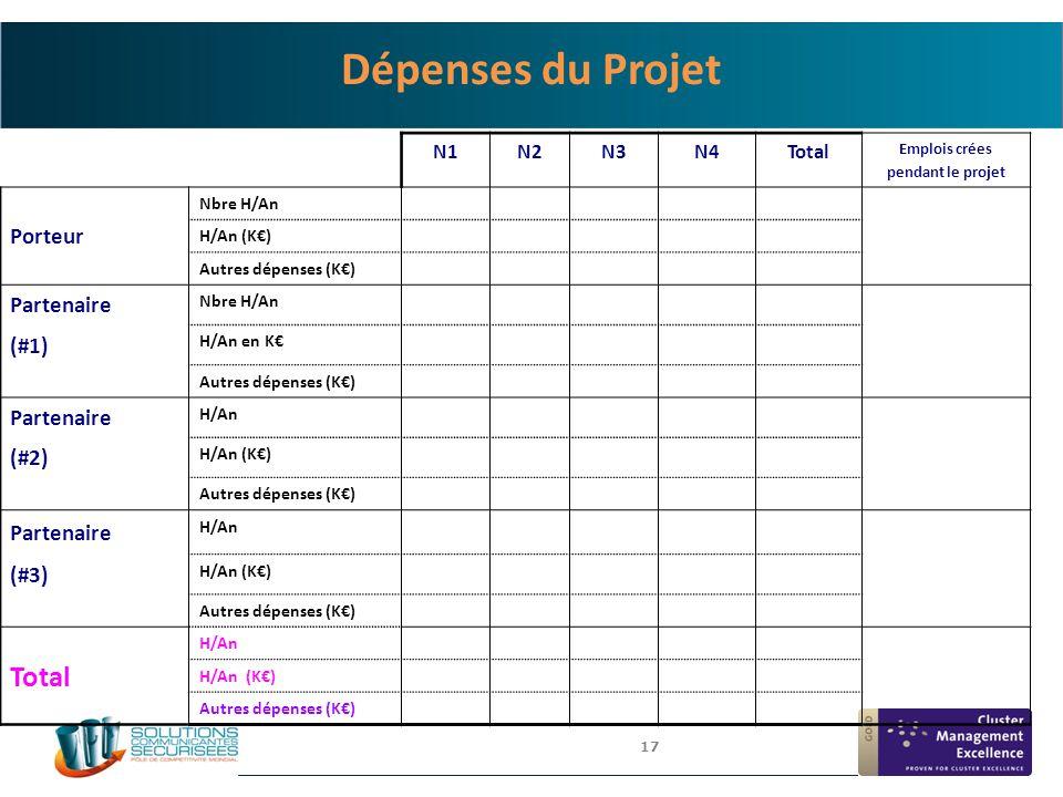 17 N1N2N3N4Total Emplois crées pendant le projet Porteur Nbre H/An H/An (K€) Autres dépenses (K€) Partenaire Nbre H/An (#1) H/An en K€ Autres dépenses