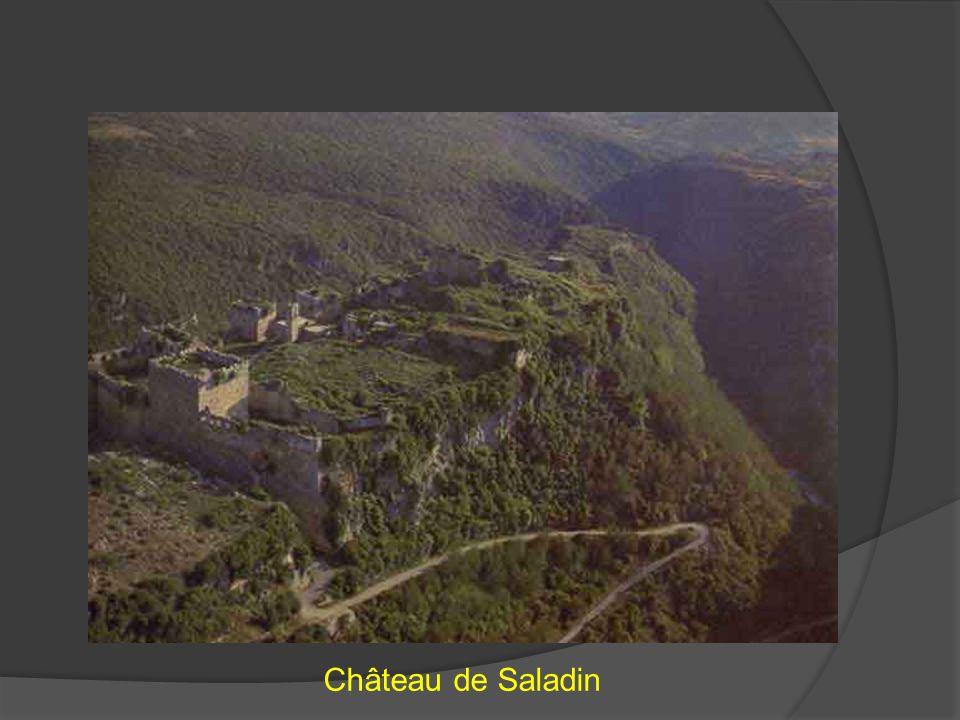 Château de Saladin