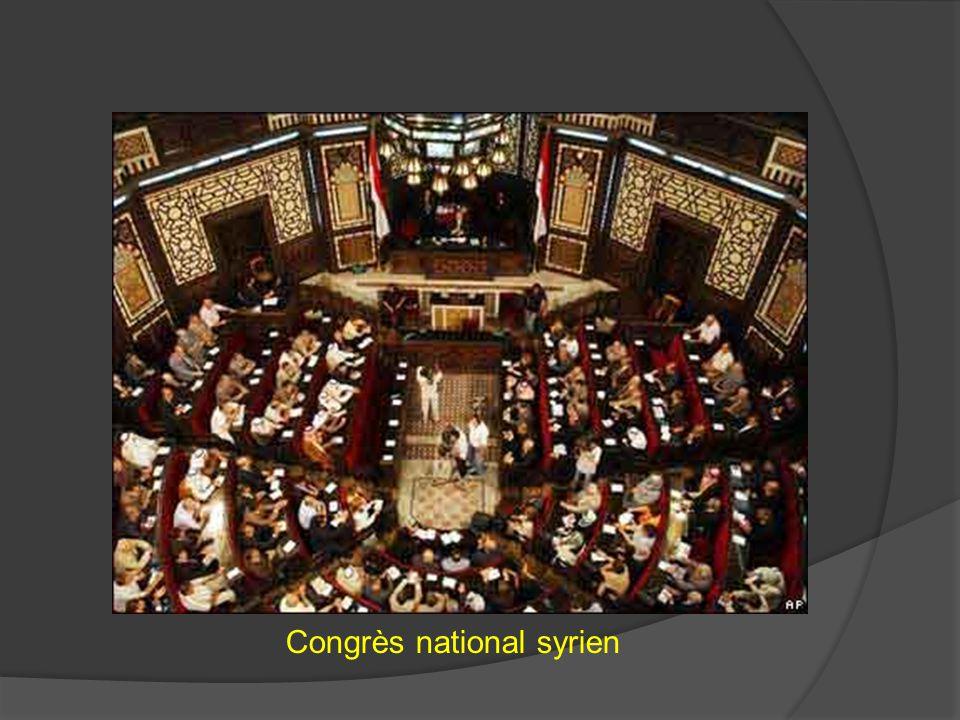 Congrès national syrien