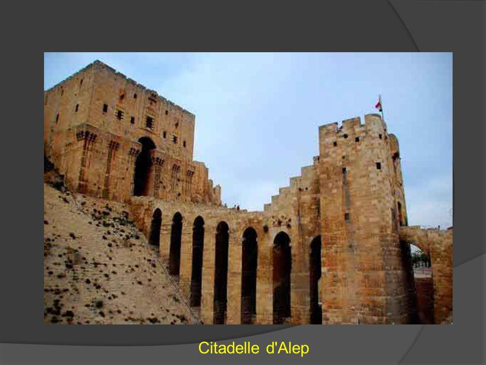 Citadelle d Alep