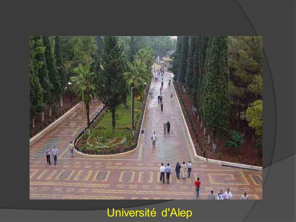 Université d Alep