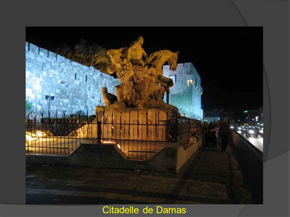 Citadelle de Damas