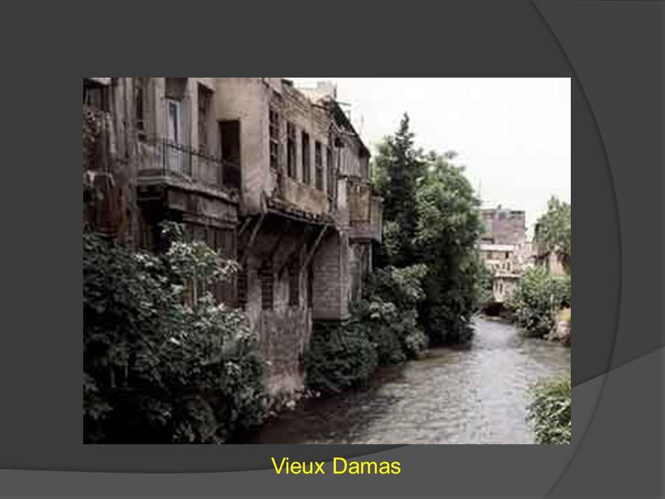 Vieux Damas