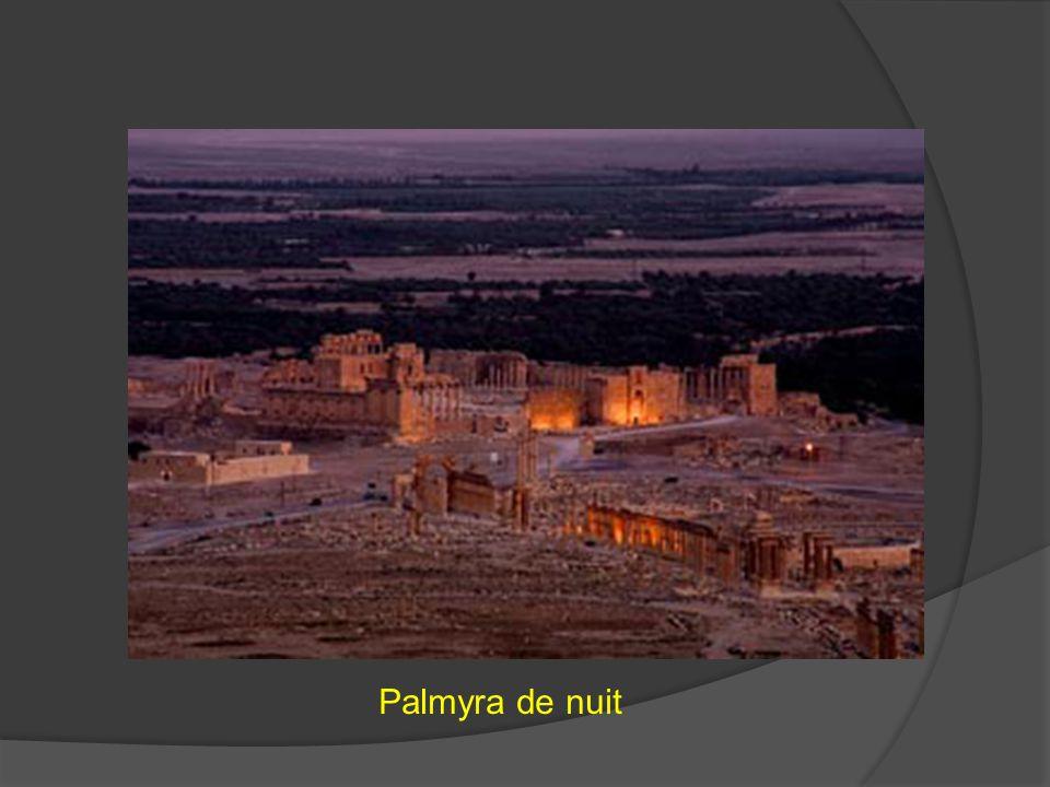 Palmyra de nuit