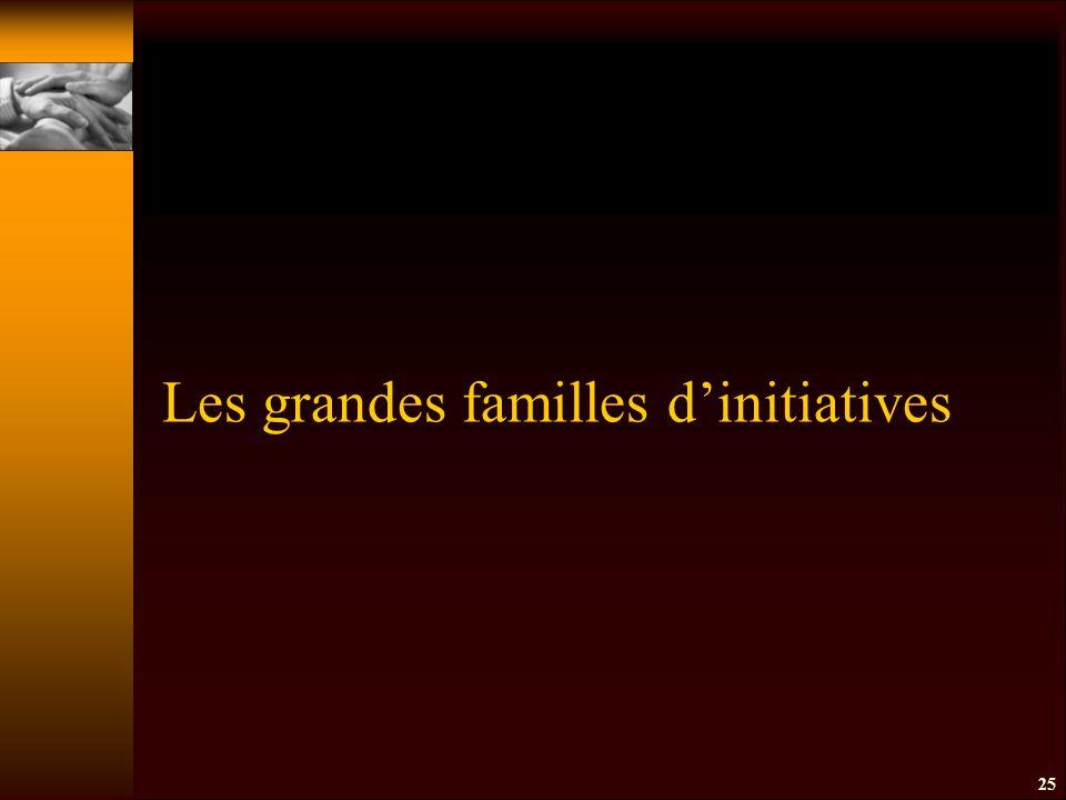 25 Les grandes familles d'initiatives