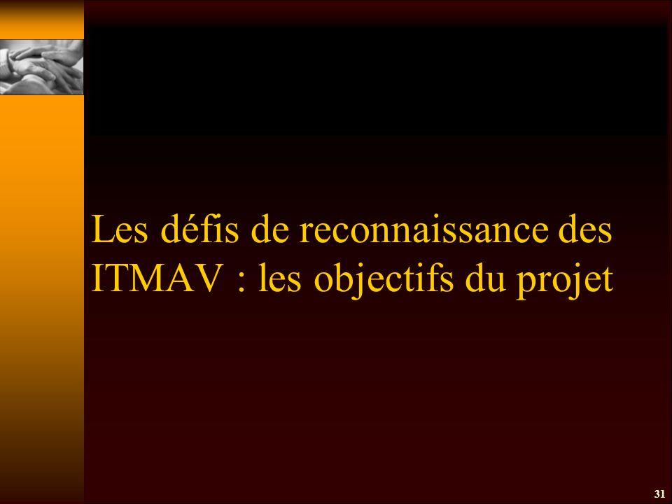 Les défis de reconnaissance des ITMAV : les objectifs du projet 31
