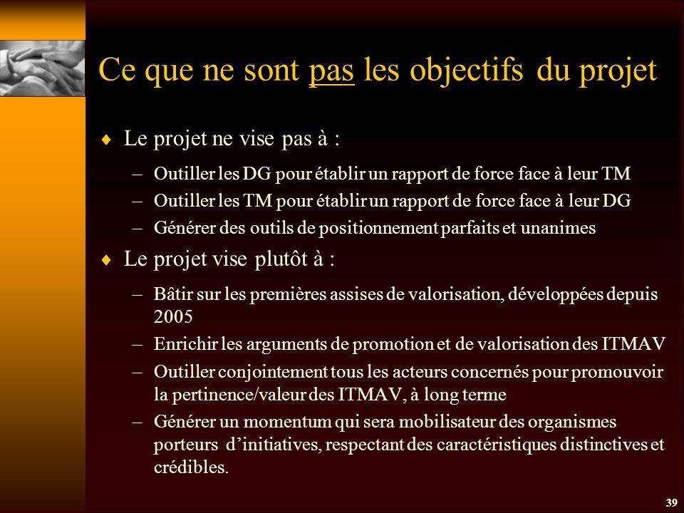 Ce que ne sont pas les objectifs du projet  Le projet ne vise pas à : –Outiller les DG pour établir un rapport de force face à leur TM –Outiller les TM pour établir un rapport de force face à leur DG –Générer des outils de positionnement parfaits et unanimes  Le projet vise plutôt à : –Bâtir sur les premières assises de valorisation, développées depuis 2005 –Enrichir les arguments de promotion et de valorisation des ITMAV –Outiller conjointement tous les acteurs concernés pour promouvoir la pertinence/valeur des ITMAV, à long terme –Générer un momentum qui sera mobilisateur des organismes porteurs d'initiatives, respectant des caractéristiques distinctives et crédibles.