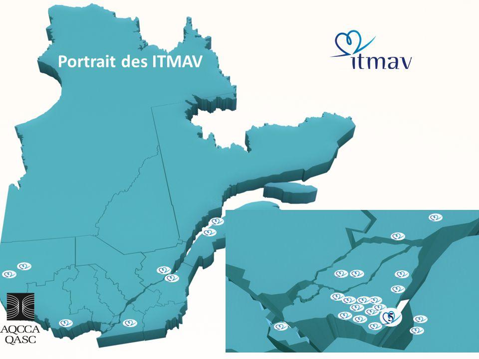 10 5 Portrait des ITMAV