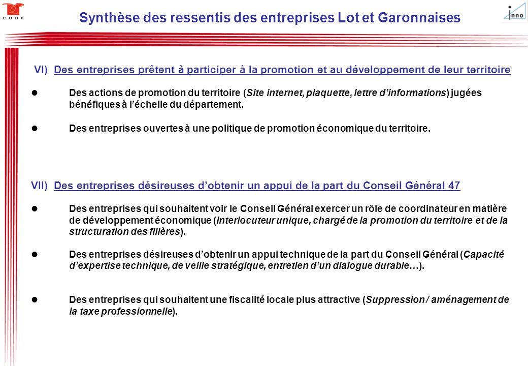 VI) Des entreprises prêtent à participer à la promotion et au développement de leur territoire Des actions de promotion du territoire (Site internet,