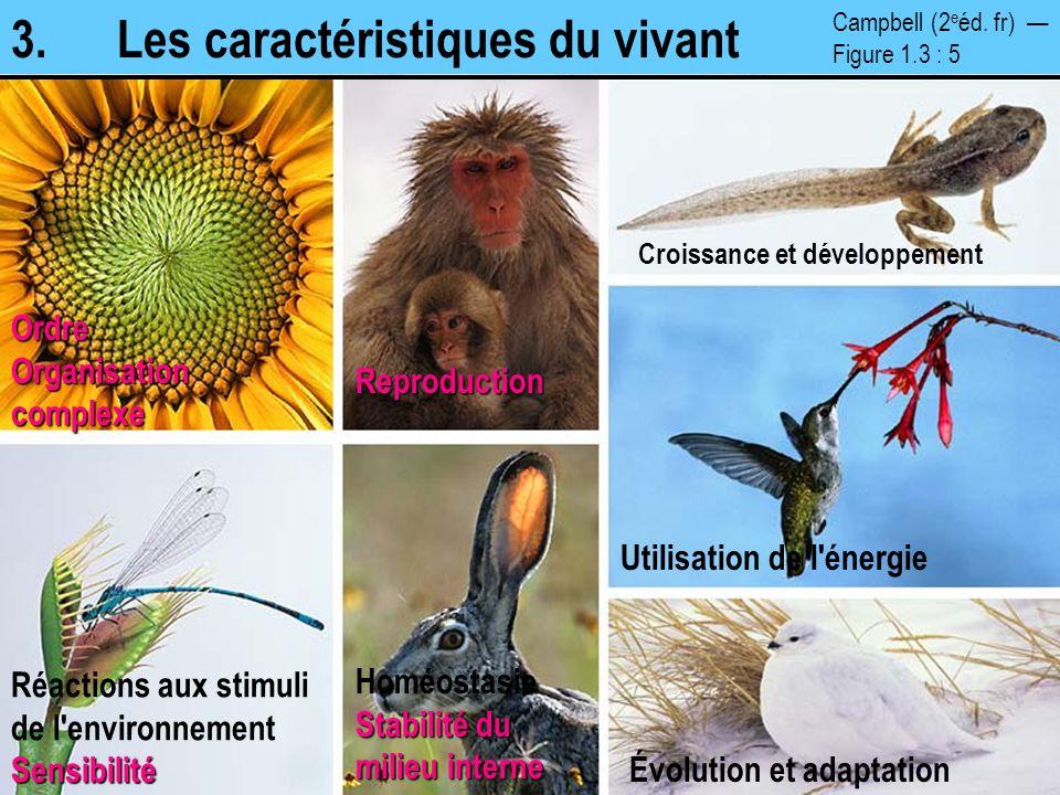 3.Les caractéristiques du vivantOrdre Organisation complexe Reproduction Croissance et développement Évolution et adaptation Stabilité du milieu inter