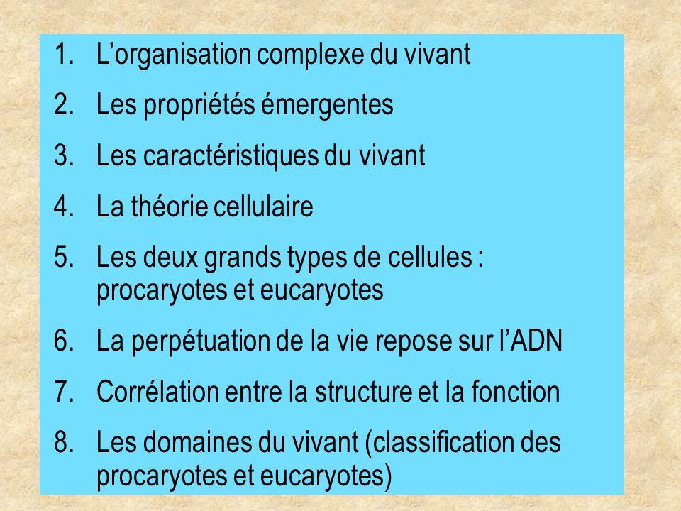 1.L'organisation complexe du vivant 2.Les propriétés émergentes 3.Les caractéristiques du vivant 4.La théorie cellulaire 5.Les deux grands types de ce