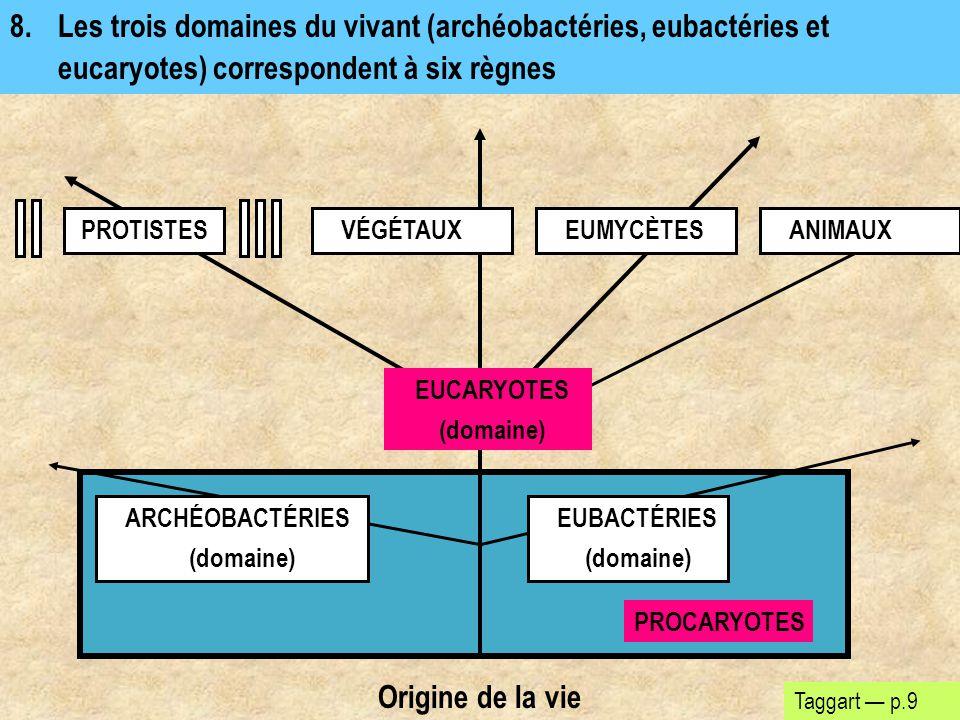 8.Les trois domaines du vivant (archéobactéries, eubactéries et eucaryotes) correspondent à six règnes Taggart — p.9 Origine de la vie PROTISTESEUMYCÈ
