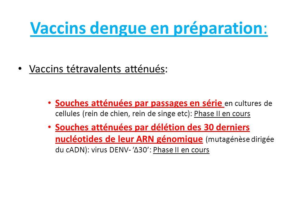 Vaccins dengue en préparation: Vaccins tétravalents atténués: Souches atténuées par passages en série en cultures de cellules (rein de chien, rein de