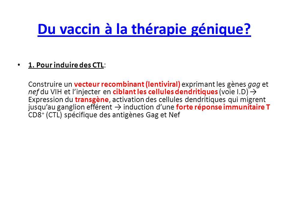 Du vaccin à la thérapie génique? 1. Pour induire des CTL: Construire un vecteur recombinant (lentiviral) exprimant les gènes gag et nef du VIH et l'in