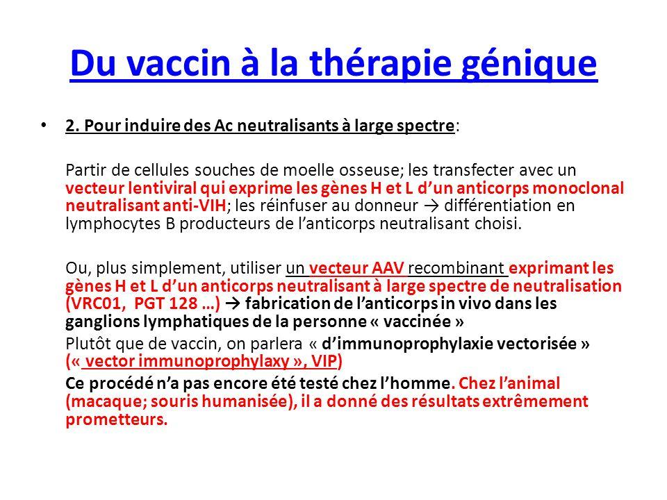 Du vaccin à la thérapie génique 2. Pour induire des Ac neutralisants à large spectre: Partir de cellules souches de moelle osseuse; les transfecter av