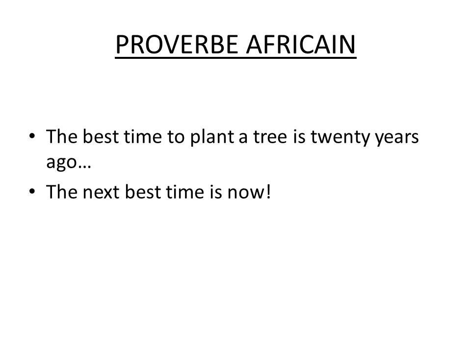 PROVERBE AFRICAIN The best time to plant a tree is twenty years ago… The next best time is now!