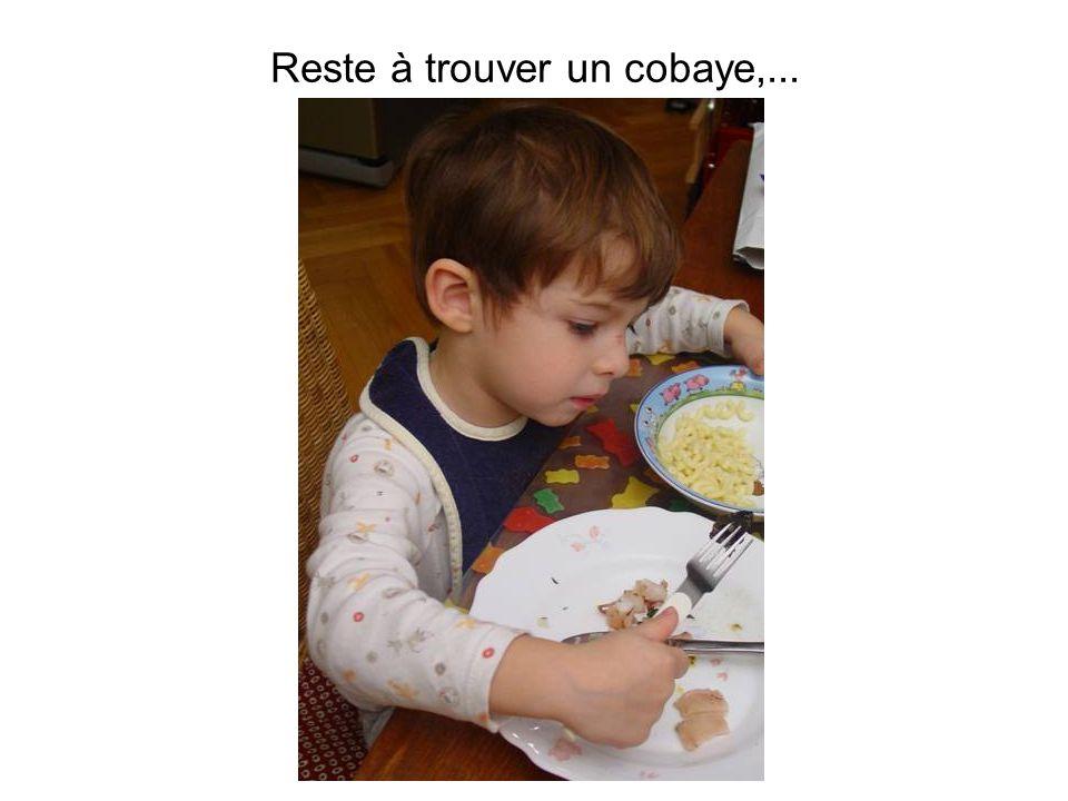 © S. Richet - 24/01/2009 Reste à trouver un cobaye,...