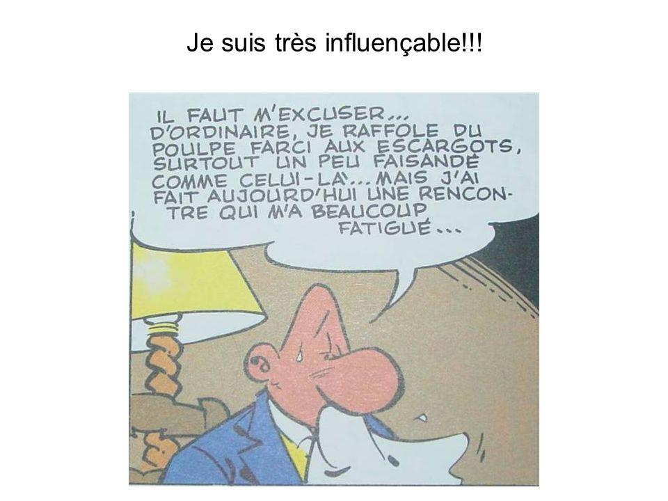 © S. Richet - 24/01/2009 Je suis très influençable!!!