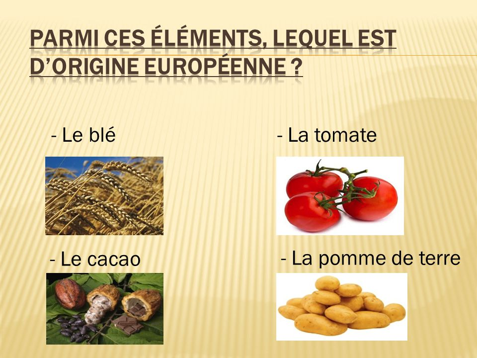 - Le blé- La tomate - La pomme de terre - Le cacao