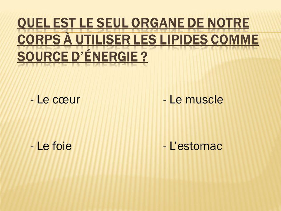 - Le cœur - Le foie - Le muscle - L'estomac