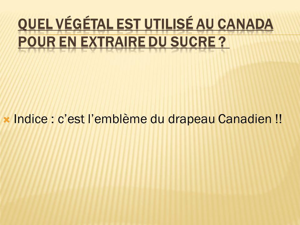  Indice : c'est l'emblème du drapeau Canadien !!