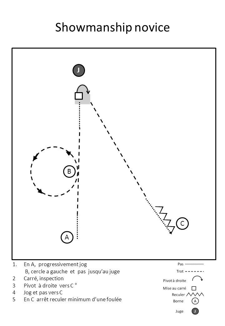 Showmanship novice A J B C 1.En A, progressivement jog B, cercle a gauche et pas jusqu'au juge 2Carré, inspection 3Pivot à droite vers C ° 4Jog et pas