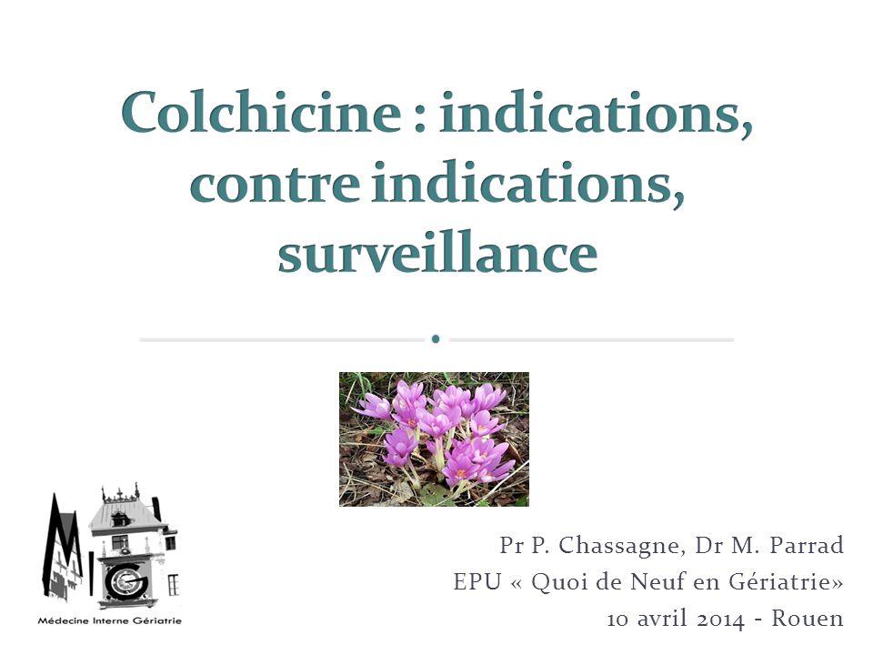 Pr P. Chassagne, Dr M. Parrad EPU « Quoi de Neuf en Gériatrie» 10 avril 2014 - Rouen