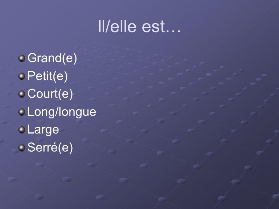 Il/elle est… Grand(e) Petit(e) Court(e) Long/longue Large Serré(e)